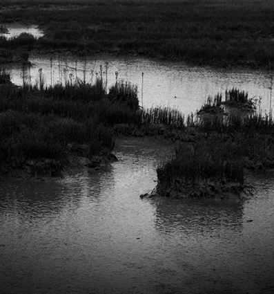 Mysterious Estuary2, East Anglia, Copyright ⓒ 2008 Cate McRae; All Rights Reserved reserved